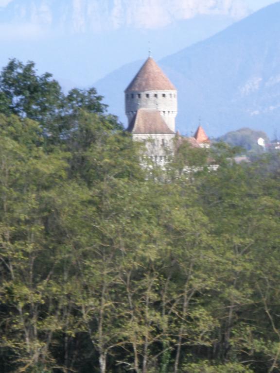 Le Château de Montrottier protège les collections